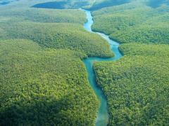 Karibischer Inselspaß und Amazonas-Erlebnisfahrt