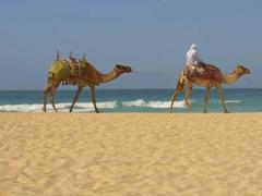 Silvester in den Emiraten