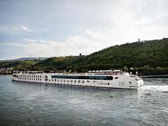 Rhein Silvestertraum